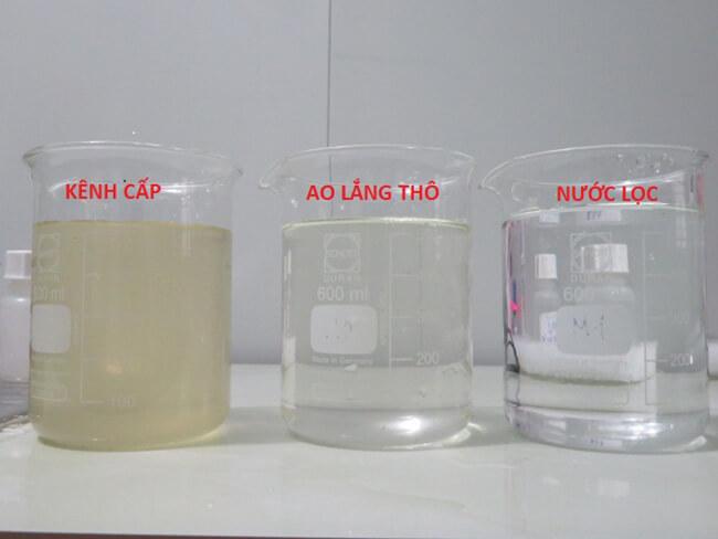 Hình nước đã qua xử lý bằng hóa chất xử lý nước nuôi tôm và gây màu nước